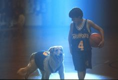 I got Buddy (Air Bud)! Which Cinematic Canine Sidekick Should Be Your Best Friend? Air Bud Movies, Cinema Date, Disney Dogs, Disney Live, Dog Shaming, About Time Movie, Look At You, Attractive Men, I Love Dogs