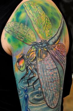 dragonfly-tattoo.jpg (800×1208)