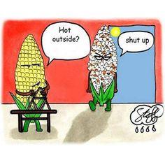 Why Pop-Corn hates summer