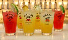 Malibu rum drinks.