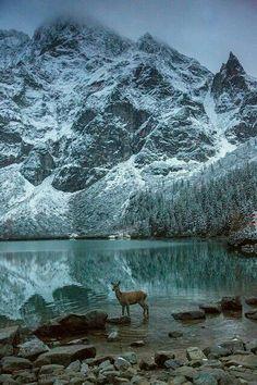Morskie Oko lake,  mnick mountain,  Poland