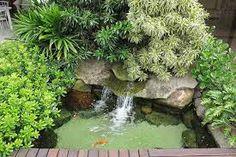 Resultado de imagem para ecosys lagos