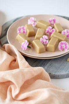 HEALTHY RUSSIAN FUDGE - plant-based, refined sugar free, low sugar, dairy free, vegan, healthier, gluten free, 5 minutes, 5 ingredients, recipe, begoodorganics