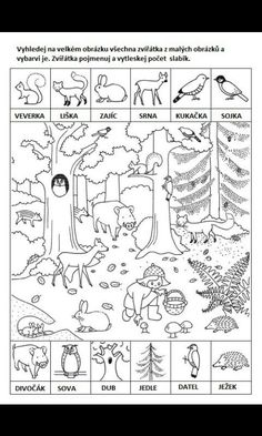 Forest Animals, Woodland Animals, Infant Activities, Preschool Activities, Alphabet Coloring Pages, Elementary Music, Summer Kids, Art Lessons, Art For Kids