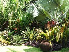 Jardines tropicales, paraísos de inigualable estética