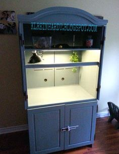 Convert an armoire into a cage for your bearded dragon! Get an armoire, remove any shelves needed, and drill holes for ventilation if there are not any available already. Reposition the shelves in the Reptile Cage, Reptile Habitat, Reptile Room, Reptile Enclosure, Reptile House, Terrariums, Terrarium Reptile, Terrarium Ideas, Bearded Dragon Habitat