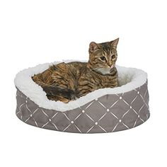 MidWest Homes for Pets Couture Orthopedic Cradle Pet Bed for Dogs & Cats, X-Small - Dog Store Cuddle Bed, Cradle Bedding, Toy Dog Breeds, Egg Crates, Puppy Day, Grey Dog, Gray, Dog Store, Pet Beds