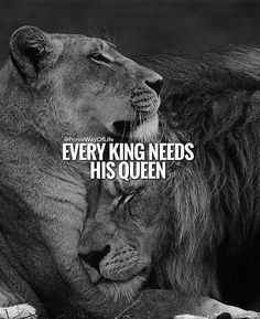 67 Great Inspirational Quotes & Motivational Words To Keep You Inspired - Trend True Quotes 2020 Great Inspirational Quotes, Motivational Words, Wisdom Quotes, True Quotes, Daily Quotes, Qoutes, Lioness Quotes, Lion And Lioness, Lion Love