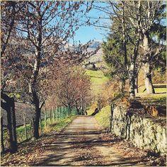 """""""Prospettive di paradiso"""" La #PicOfTheDay #turismoer di oggi cammina sui soleggiati sentieri di #Fanano, #Appennino Modenese  Complimenti e grazie a @allepozzetti / """"Paradise perspectives"""" Today's #PicOfTheDay #turismoer walks on the sunny paths of #Fanano, #Apennines of #Modena  Congrats and thanks to @allepozzetti"""