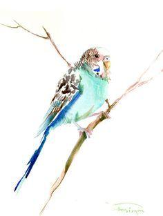 Parakeet, original watercolor painting, 12X 9 in, turqoise birds art,