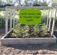 Tomato-Planter-Main.jpg (2756×2664)
