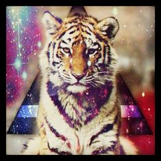 I am now OBSESSED with galaxy triangles ;) and tigers :)