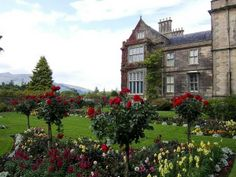 Killarney National Park - the oldest Ireland castle gardens