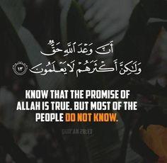 Quran Verses, Quran Quotes, Islamic Love Quotes, Arabic Quotes, Islam Beliefs, Learn Islam, Islamic World, Holy Quran, Hadith