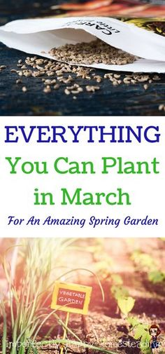 Everything You Can Plant in March for an Amazing Spring Vegetable Garden Zones, 1 - 10.