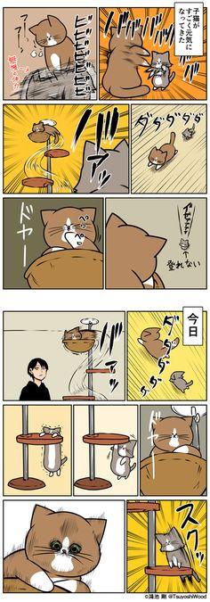 【漫画日記】猫って驚いた顔するんだ