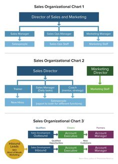 An organizational chart template showing the structure of