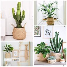 Made of Natural Seagrass, handmade product,every basket will be a little different not as machine made. Please kindly allowed for the existence of some flaws Multi-application: Christmas Holiday Decor, Creative Storage, Plant Basket Pot, Laundry, Toy Organizer, Picnic, Grocery Baskets, Beach Bag, etc.