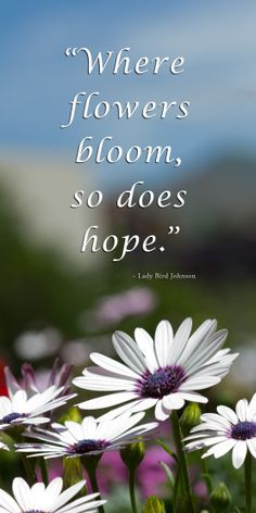 """Where flowers bloom, so does hope."" - Lady Bird Johnson"