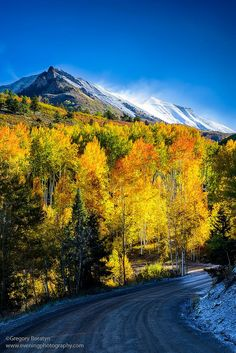 Autumn's Look (USA) by gregoryboratyn