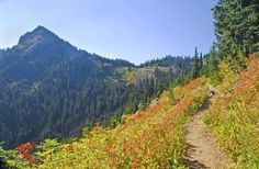 Pacific Crest Trail (PCT) Section I - White Pass to Snoqualmie Pass