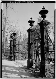 6.  Cast iron gate, close up - Airliewood, 109 Salem Avenue, Holly Springs, Marshall County, MS