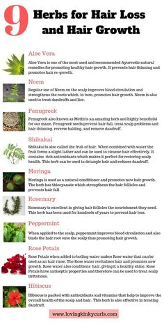 Natural Herbs for Hair Loss and Hair Growth Here is a list of 9 Natural Herbs that have been used for decades to prevent hair loss and promote healthy hair growth. Incorporate of these herbs in your hair care regimen and you will be amazed by the 4c Hair Growth, Herbs For Hair Growth, Healthy Hair Growth, Ayurvedic Hair Care, Oil For Hair Loss, Hair Loss Remedies, Prevent Hair Loss, Hair Loss Treatment, Natural Hair Care