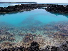 La Peruse Bay, Maui HI.  Best snorkeling at the aquarium.