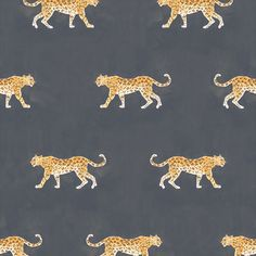 Caitlin McGauley for Studio Four cheetah wallpaper in charcoal