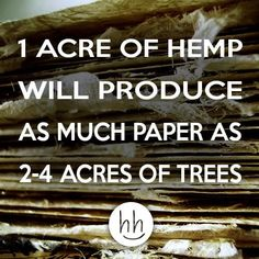 Click here for more marijuana facts
