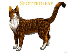 Spottedleaf, former medicine cat of ThunderClan. She also fell in love with Firestar but she died later on in the series.