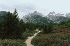 Happy trails. by dominicstarley