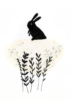 Illustration: Katie Wilson