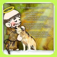 Resultado de imagem para oração são francisco assis pelos animais