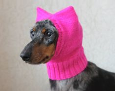 KNITTING PATTERN, Small Dog Pussy Hat, Pussyhat Project, Pussycat Hat, Pussy Hat, Dachshund Hat, Dog Hat, Dog Clothing, Silly Dog Hat