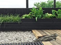 If you are working with the best backyard pool landscaping ideas there are lot of choices. You need to look into your budget for backyard landscaping ideas Diy Pergola, Diy Garden, Backyard Pergola, Garden Beds, Pergola Kits, Pergola Carport, Cheap Pergola, Pergola Designs, Pergola Curtains