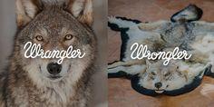 Wrangler Wrongler