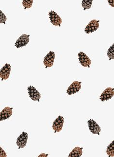 Cone Pattern (For Sale)