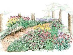 Woodland path #garden plan.