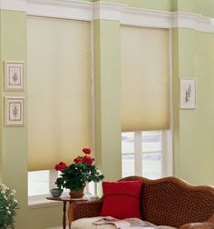 Shop for custom window treatments. Our very own Star Blinds shades and blinds offer quality and value for less. Bedroom Shades, Office Shades, Child Safe Window Treatments, Light Filtering Cellular Shades, Windows, House Styles, Shades, Blinds, Window Treatments