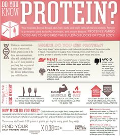 Protein Infographic