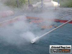 Cat Odor Removal Coral Gables