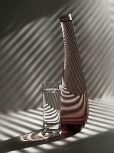 still life photography - I love the lighting and the stripes - sort of zebra like but not.