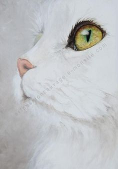 Peinture chat Cat Eyes Drawing, Simple Cat Drawing, Watercolor Cat, Watercolor Paintings, Site Art, Pretty Animals, Pet Memorials, Art Drawings Sketches, Beautiful Paintings