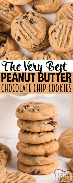 Peanut Butter Chocolate Chip Cookies are soft, chewy, and they turn out perfect every time! Start with an amazing peanut butter cookie recipe and add chocolate chips to take these cookies to the next level! Delicious Cookie Recipes, Holiday Cookie Recipes, Quick Bread Recipes, Best Cookie Recipes, Fruit Recipes, Dessert Recipes, Bar Recipes, Chocolate Chips, Chocolate Chip Cookies