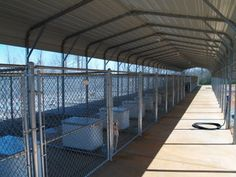 Covered Kennels. But I don't like the chain link- dogs need their privacy....but they should spend most of their time socializing in a pack-like habitat.