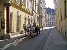 wien street - Google-Suche Matte Painting, Street View, Google, Searching