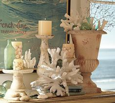 Enhancing Nautical Decor Theme with Sea Shell Crafts and Images Seaside Decor, Beach House Decor, Coastal Decor, Coastal Fall, Coastal Interior, Tropical Decor, Interior Design, Coastal Cottage, Coastal Style