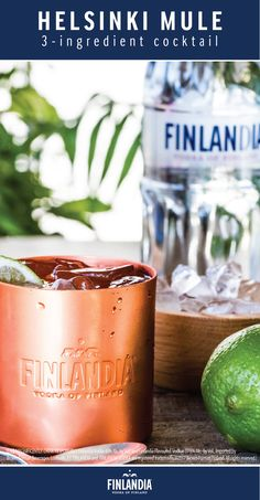 To wake the senses, add the ginger's heat. The Helsinki Mule is full of flavor and heightens your tastebuds. This is the perfect drink to make when you want to try out something new and unique. Build this cocktail with ice, adding a slice of cucumber for additional flavor and decoration.