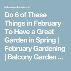 Do 6 of These Things in February To Have a Great Garden in Spring | February Gardening | Balcony Garden Web